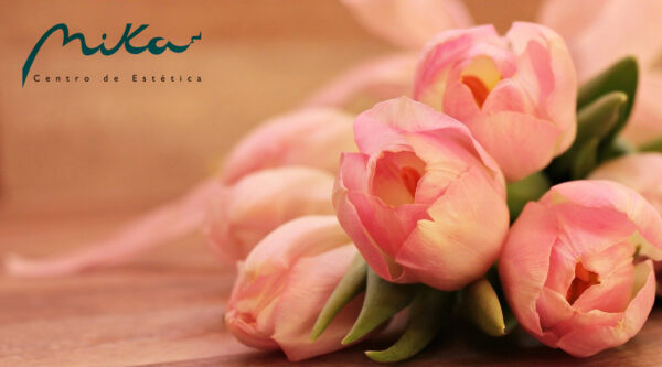 cheque-regalo-tulipan